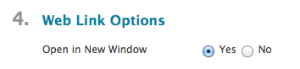 Under Web Link Options, Open in New Window is set to Yes