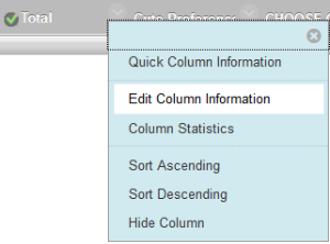Edit Column Information option.