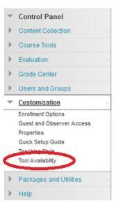 Control Panel, Customization, Tool Availability