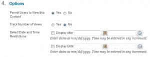 VoiceThread content item options
