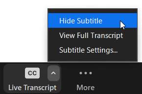 Disable subtitle setting