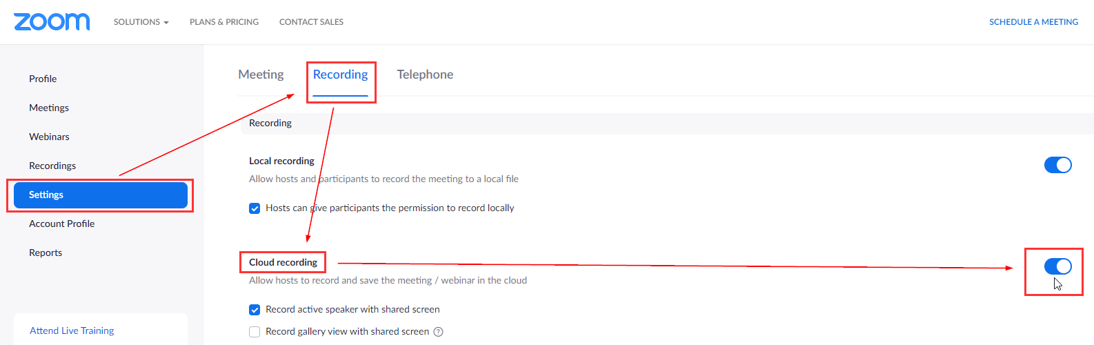 Cloud recording toggled on in settings